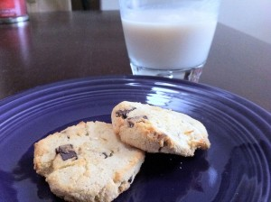 gluten free coconut chocolate chip cookies