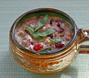 thanksgiving leftover cranberry soup