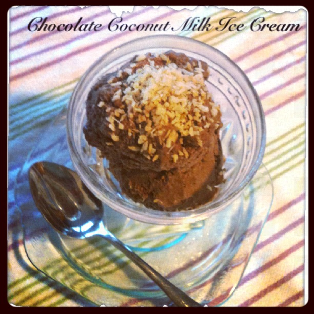 gluten free chocolate coconut ice cream recipe