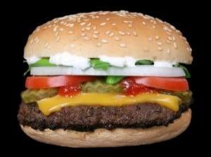 burger_21119511
