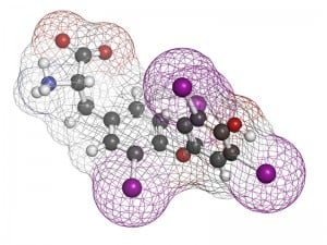 Thyroxine molecule, chemical structure. Thyroid gland hormone that plays a role in energy metabolism regulation. It is a iodine containing derivative of thyrosine. Atoms are represented as spheres with conventional color coding: hydrogen (white), carbon (grey), oxygen (red), nitrogen (blue), iodine (purple).