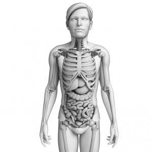 Celiac Disease Can Affect Any Body Organ or Tissue .