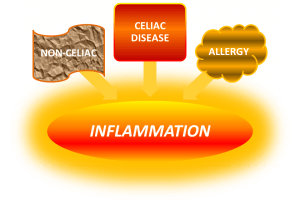 inflammation-post-4