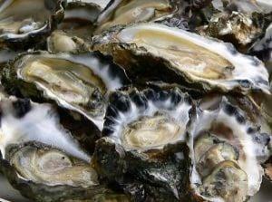 Oysters Have Mega Zinc!