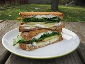 apple-gorgonzola-sandwich